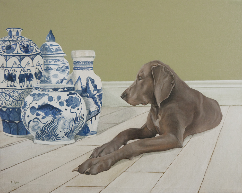 Weimaraner with blue and white chine