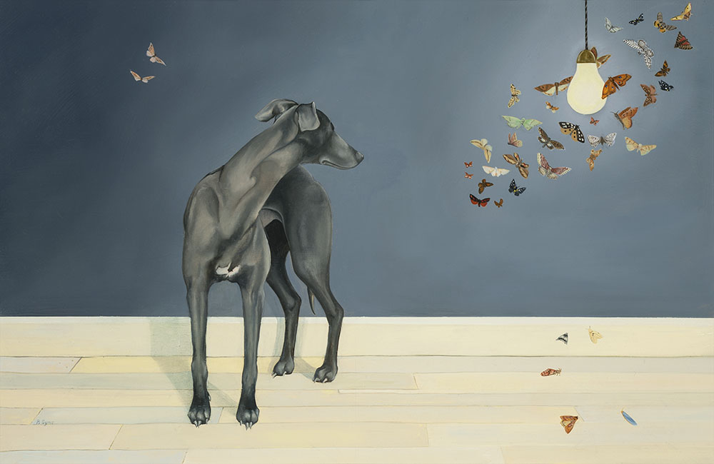 Whippet and Moths