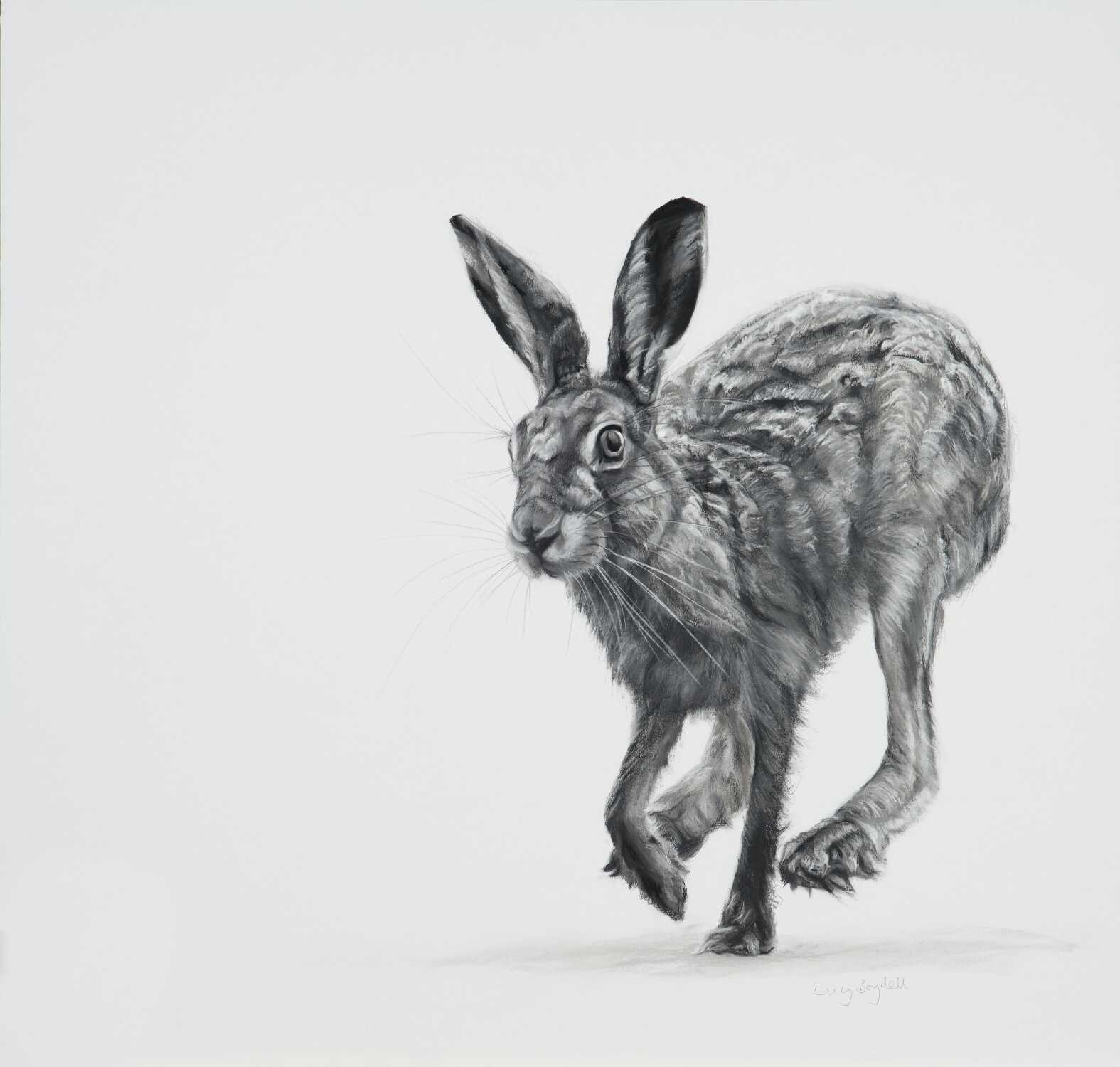 Lucy Boydell Fine Artist