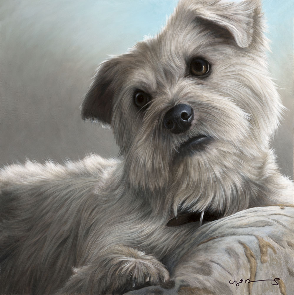 Oil on Canvas by Nigel Hemming