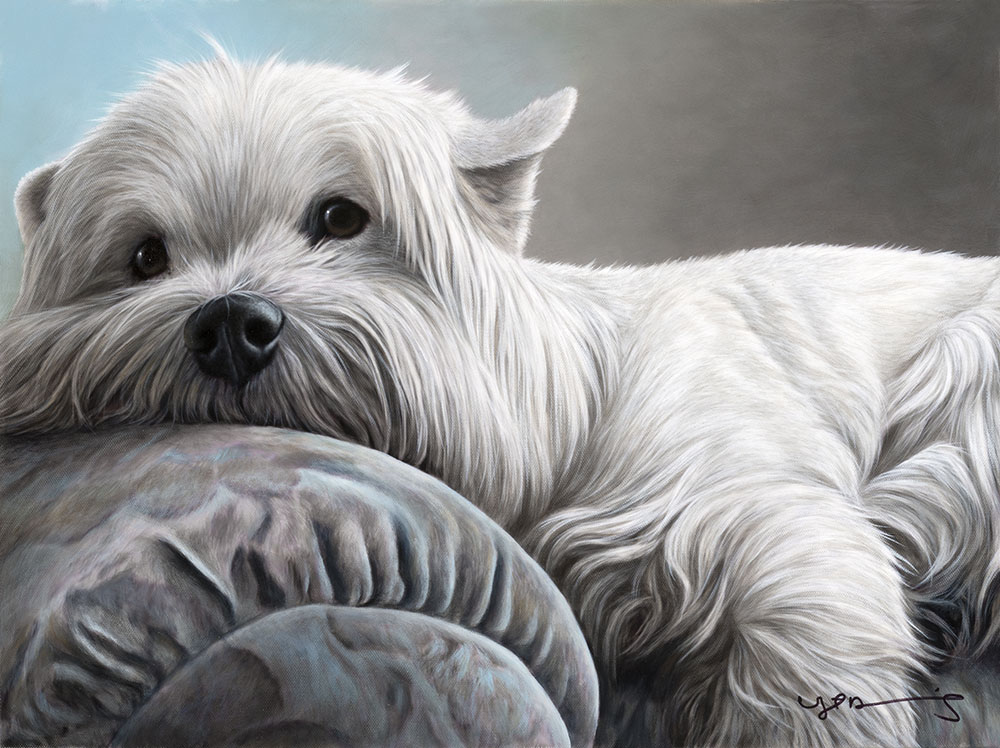 Nigel Hemming portrait of a West Highland Terrier
