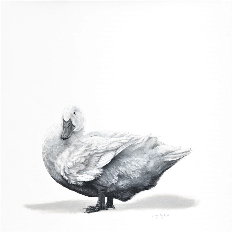 Pekin Duck by Lucy Boydell