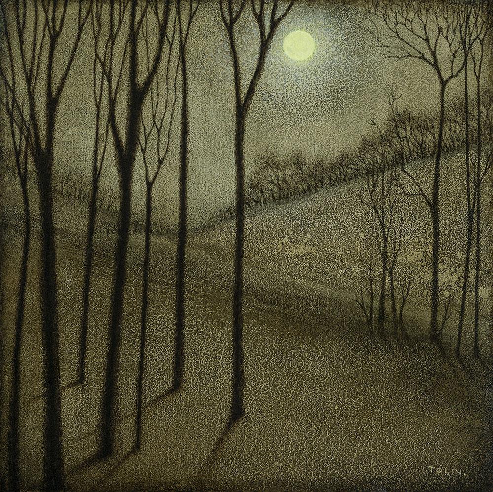 Norfolk Landscape at Night