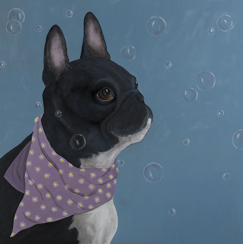 Mary Carlson Dog Portrait - French Bulldog