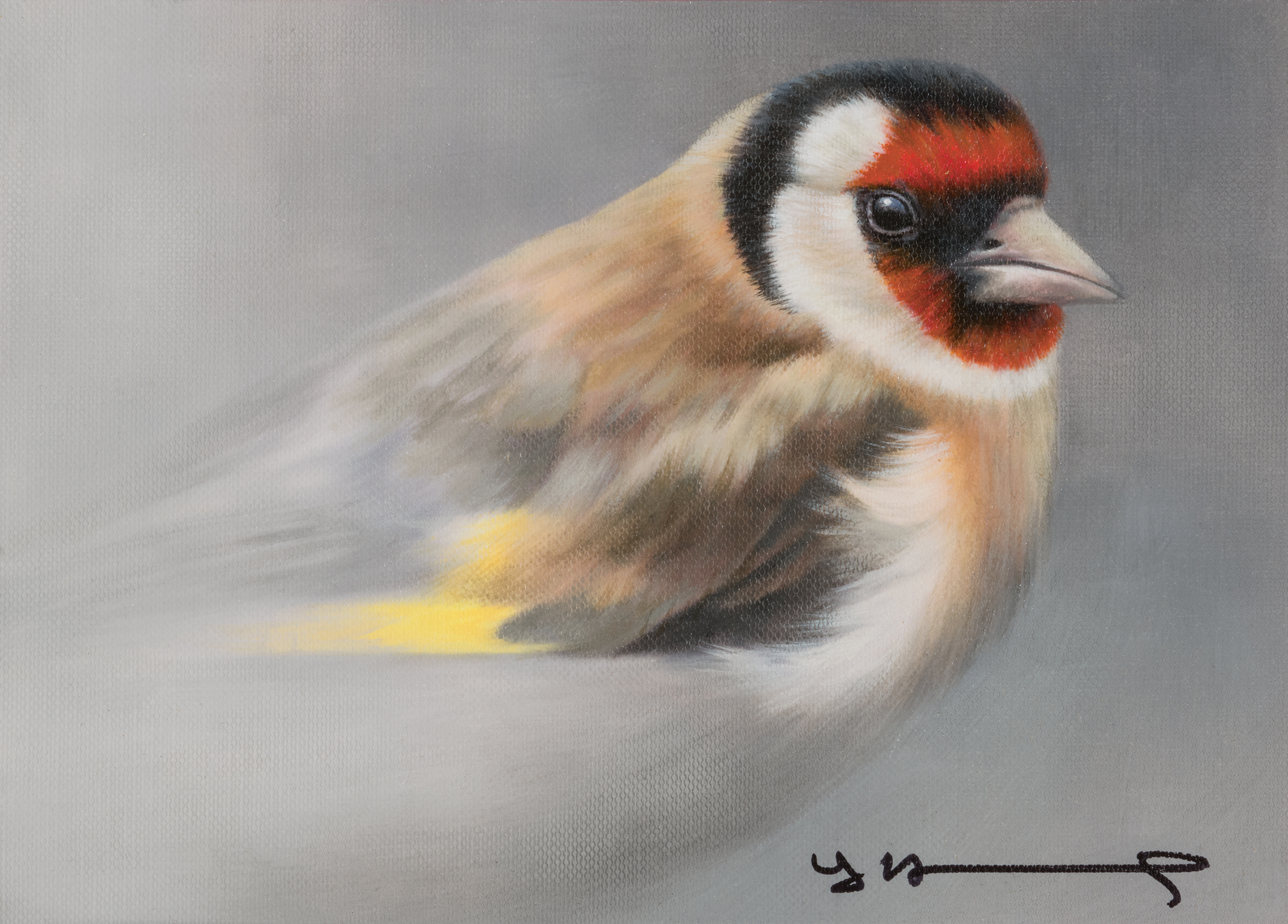 Oil on Canvas - Goldfinch