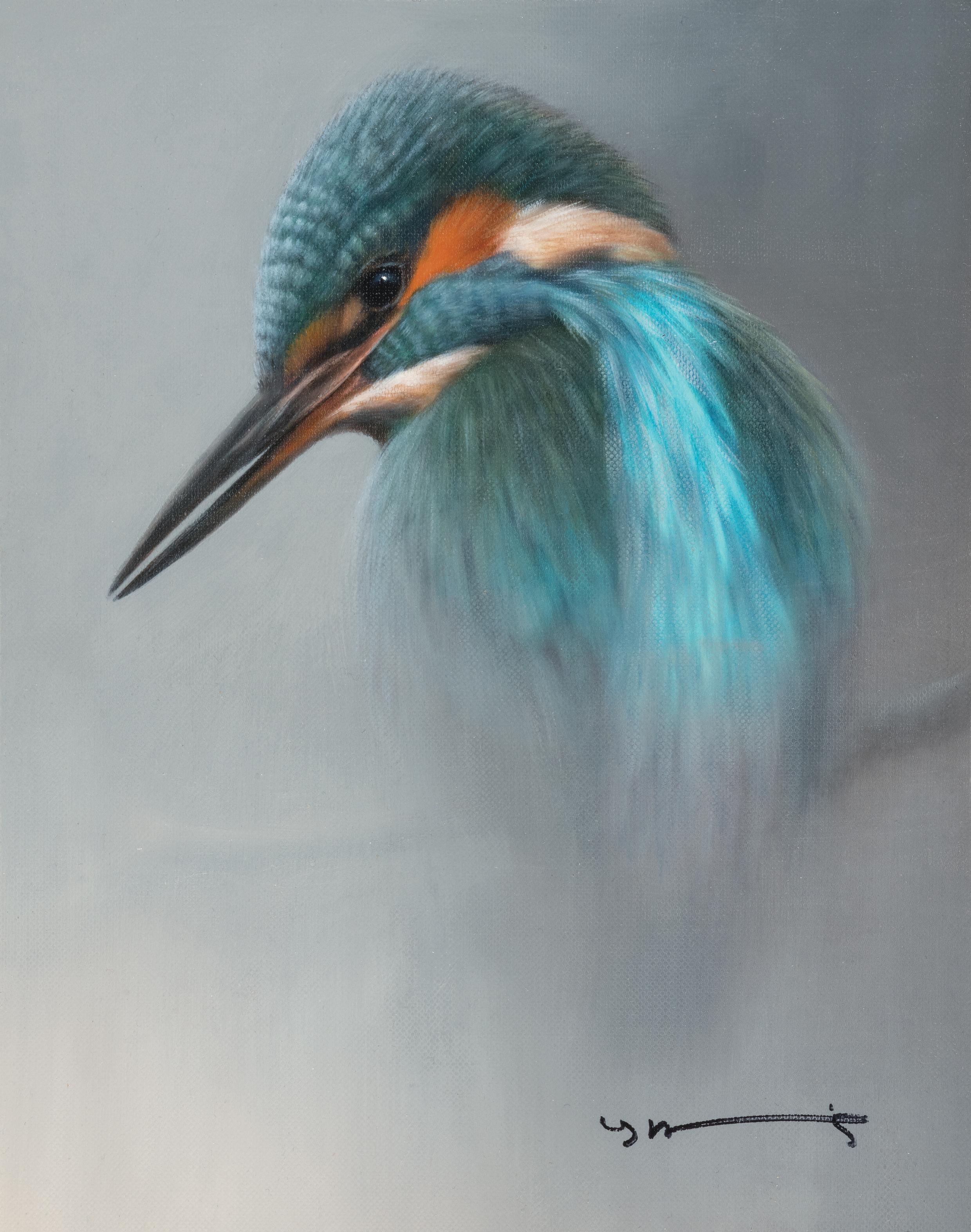 British Bird Collection