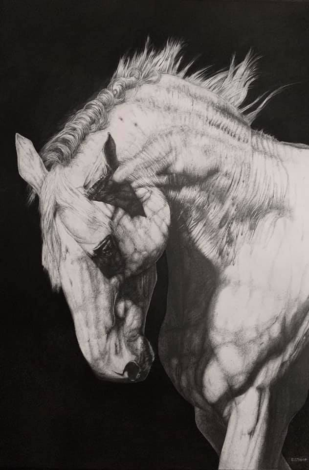 White Horse by Eleanor Rose Stamp